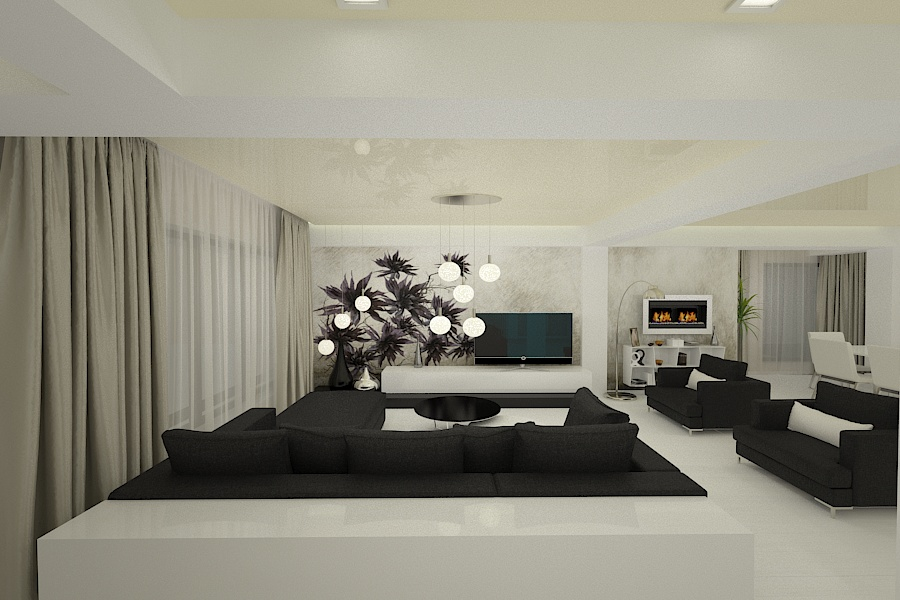 Contemporary style interior design project for a home 2